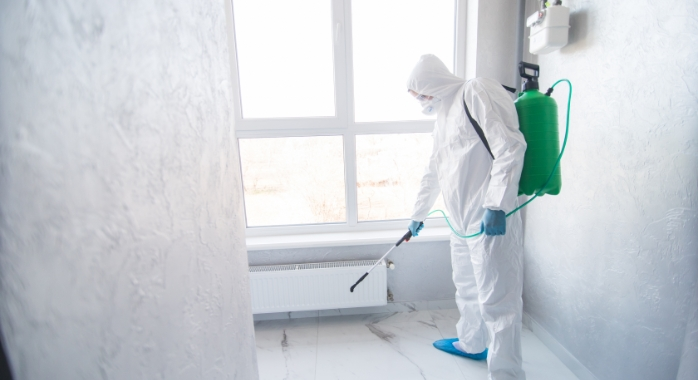 Image for Mold Remediation & Cleanup